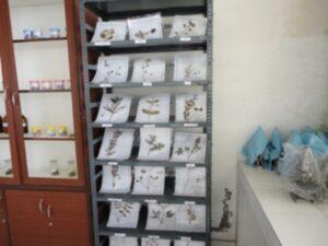 Microbiology and Biochemistry Lab